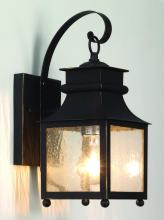 Trans Globe 45630 WB - One Light Weathered Bronze Amber Seeded Glass Wall Lantern