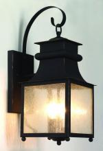 Trans Globe 45632 WB - Three Light Weathered Bronze Amber Seeded Glass Wall Lantern