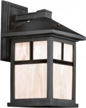 Forte 17020-01-04 - One Light Black Honey  Panels Glass Wall Lantern