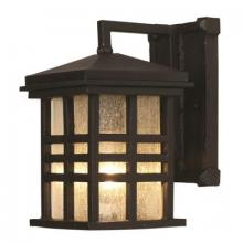 Trans Globe 4635 BK - One Light Black Clear Seeded Rectangle Glass Wall Lantern