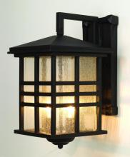 Trans Globe 4636 WB - Two Light Weathered Bronze Clear Seeded Rectangle Glass Wall Lantern