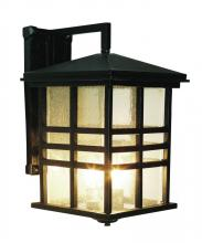 Trans Globe 4637 BK - Three Light Black Clear Seeded Rectangle Glass Wall Lantern