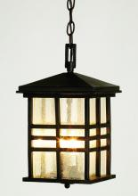 Trans Globe 4638 BK - Two Light Black Clear Seeded Rectangle Glass Hanging Lantern
