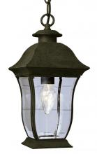 Trans Globe 4974 BK - One Light Black Clear Beveled, Curved, Rectangle Glass Hanging Lantern