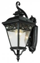 Trans Globe 50510 RT - One Light Rust Clear Seeded Glass Wall Lantern