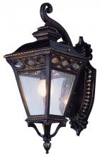 Trans Globe 50511 RT - Two Light Rust Clear Seeded Glass Wall Lantern
