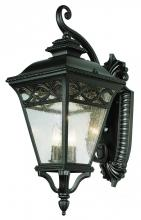Trans Globe 50512 BK - Three Light Black Clear Seeded Glass Wall Lantern