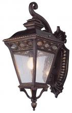 Trans Globe 50512 RT - Three Light Rust Clear Seeded Glass Wall Lantern