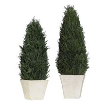 Uttermost 60140 - Uttermost Cypress Cone Topiaries, S/2